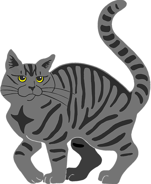 Gray Tabby Cat - tiger stripe