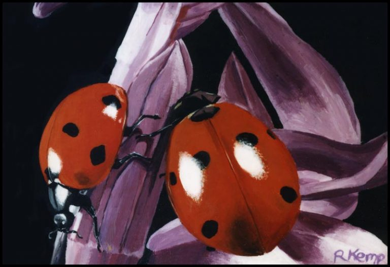 Ladies in the Garden - ladybugs