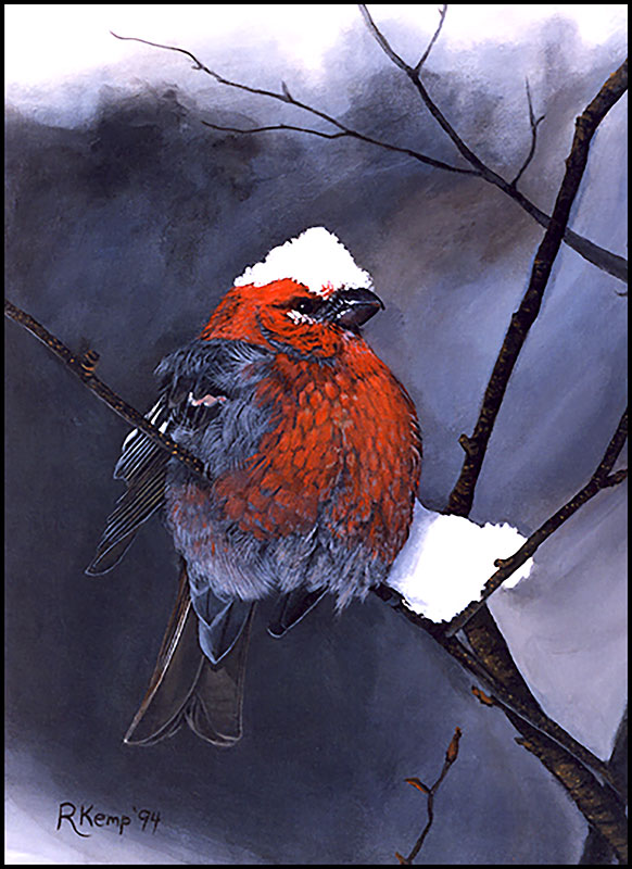 Snow Chapeau - grumpy red scarlet tanager bird